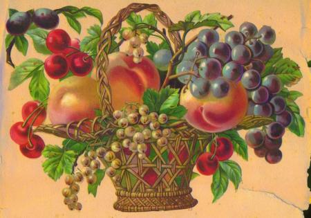 Cesto con frutta decoupage amoremio for Cesto di frutta disegno